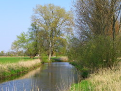 Flutgraben_Aschwarden_2