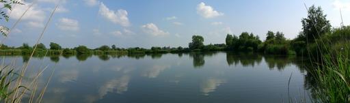 Schwanensee2_1